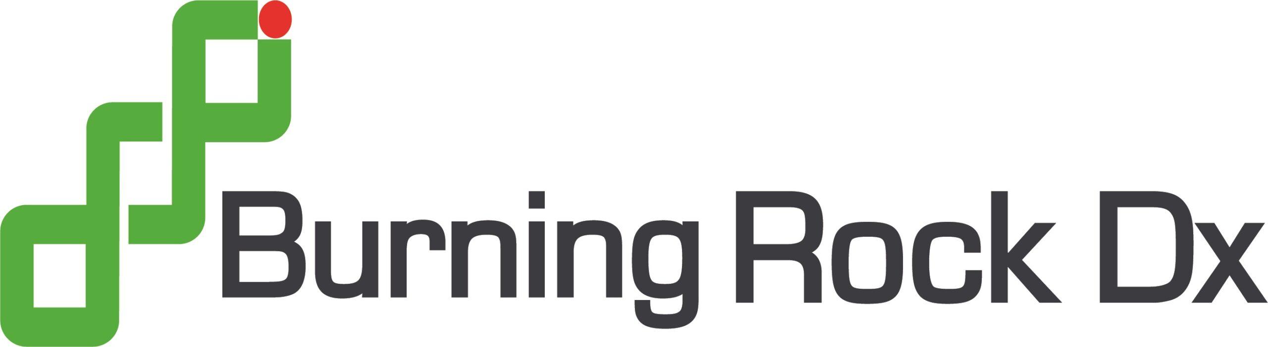 Burning Rock Dx_logos_final logo (002)